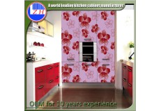 High gloss acrylic kitchen cabinets - DM9620